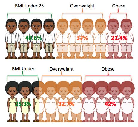 Obesity Stats Fiji