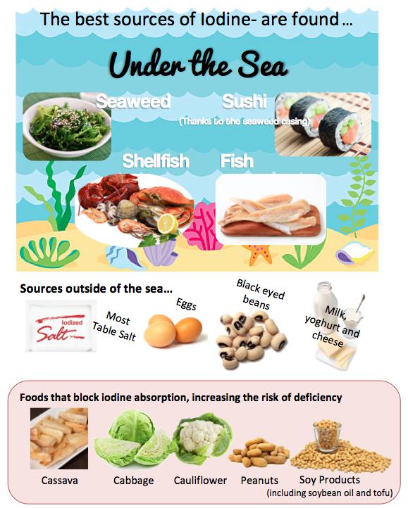 Food Sources Iodine