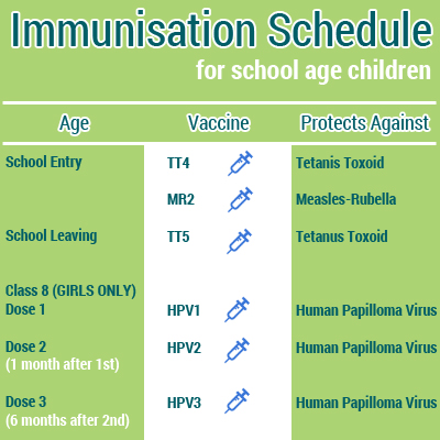 Immunisation Schedule School Age Children