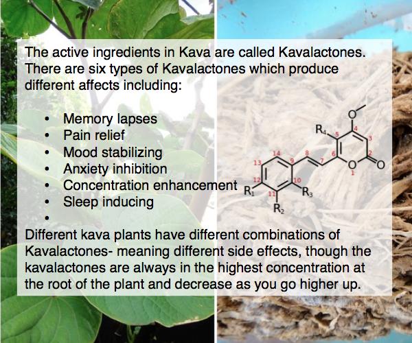 Kavalactones